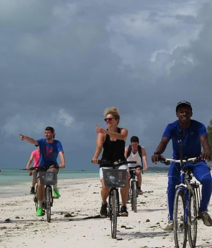 Bikes,  Kayaks,  Paddle board